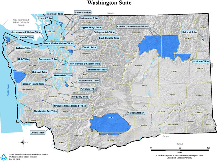 Shoalwater bay tribe master drainage study high road engineering for Build on your lot washington state